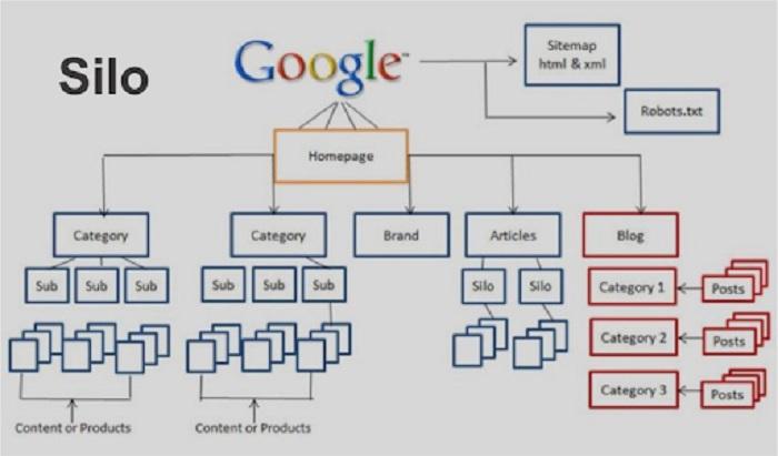 Để thu thập những nội dung từ website, các công cụ tìm kiếm thường dựa vào các liên kết