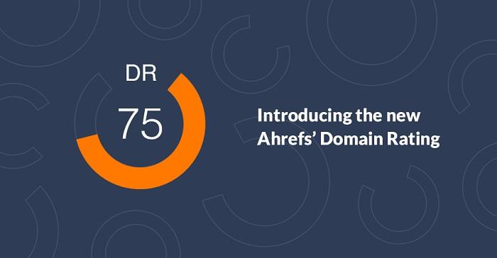 Thuật ngữ Domain Rating (DR)